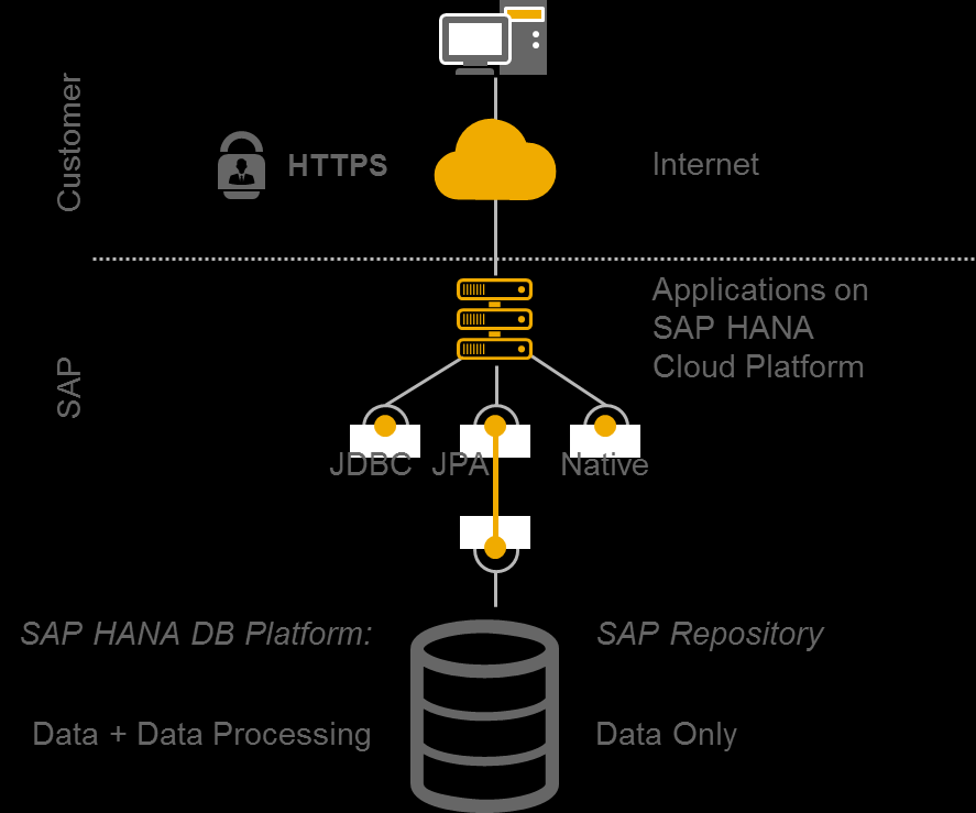 Data Persistence Service Database access on-demand leveraging the speed of HANA Push down heavy data processing operations to SAP HANA Database Platform Leverage SAP HANA Business Function Library or