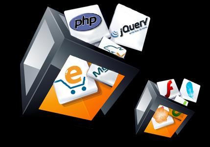 WEBSITE DEVELOPMENT Code Enterprise core competencies in designing Custom Web Applications for all types of businesses.