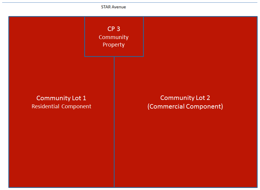 Figure 2: Sample Hierarchy of Management three management levels A developer initiating this development would initially consolidate all land into a single lot in a deposited plan and then approach
