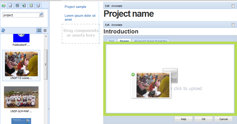 10. How to create a project page 44 Enter your introduction here. You can add an image by clicking on the Image tab.