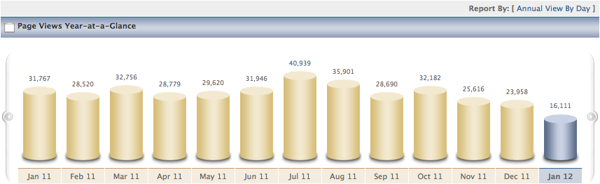 Above Graph - 2010 Website Traffic for KnoxCountyOhio.
