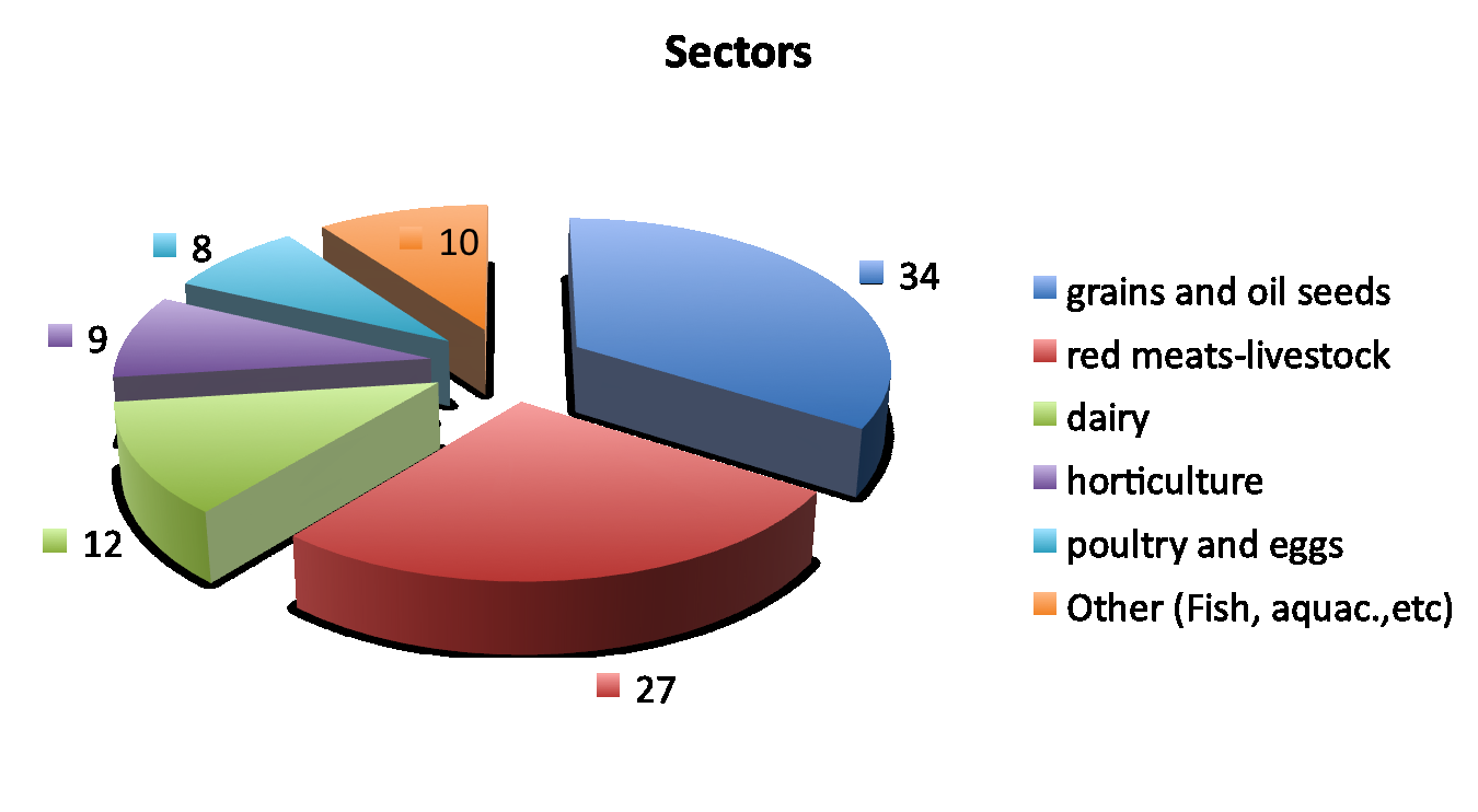Main Sectors Fonte: Elaborazioni