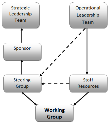 16 Figure 1: Structure and Reporting Relationships 2.8.