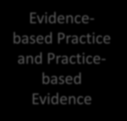 System Throughputs Evidence-Based Practice > Research > Expertise > Values Practice-Based