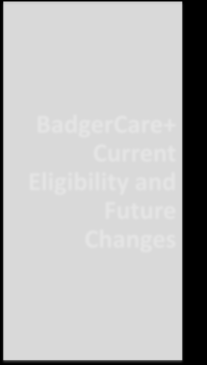 BadgerCare+ Current Eligibility