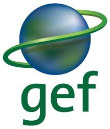 2 nd National Workshop on Global Fuel Economy Initiative (GFEI) in