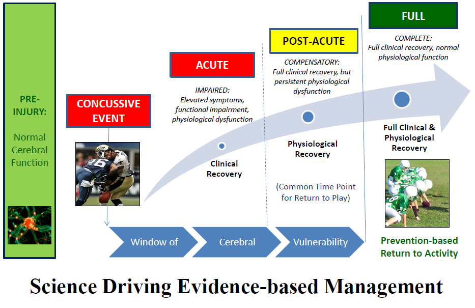 Concussion: Integrated Recovery Model