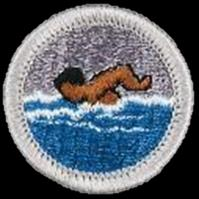 Scout/counselor Subsequent meeting Scout/counselor meetings Unit reports advancement and obtains badge for