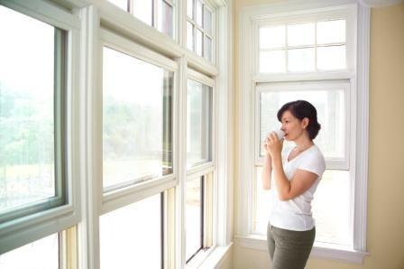 Insider Tips for Purchasing Replacement Windows From