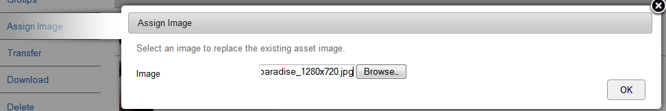 Assigning an Image You can assign an image to an asset which can be used as a thumbnail. To assign an image: 1. Start the Asset Manager application and click the Assets tab. 2.