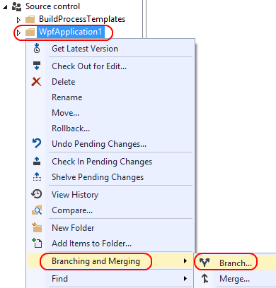 2. Expand the Source control project in the left pane, right-click WpfApplication1, and select Branching