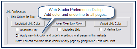 Apply underlines and link colors to the whole website If you are using the same color and style for the whole site, this feature can save you some time.