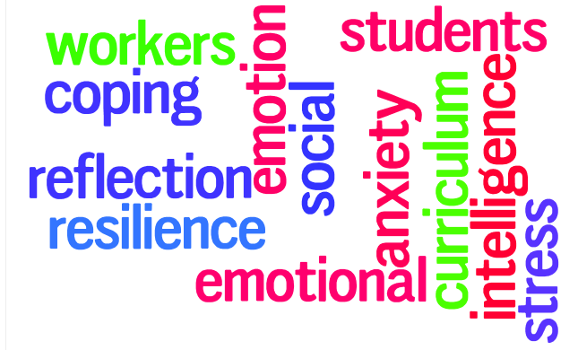 Developing an emotional curriculum for social workers; perceptions