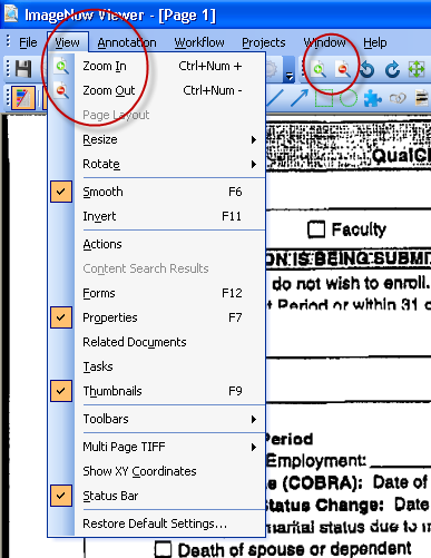 11. The Zoom In or Zoom Out options on the View menu (or the magnifying glass icons) may enhance your viewing. 12.