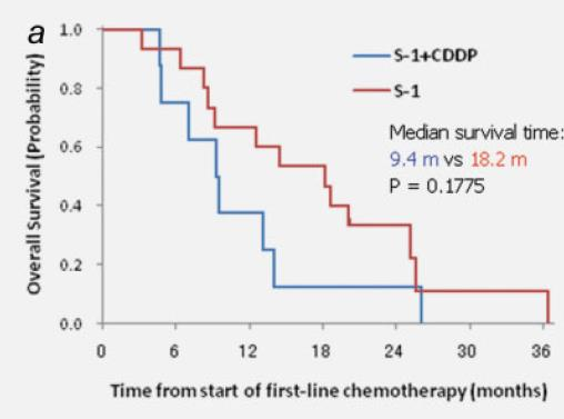 Fluoropyrimidines and target enzyme expression TS low + TP low + OPRT high Better survival when treated with S-1