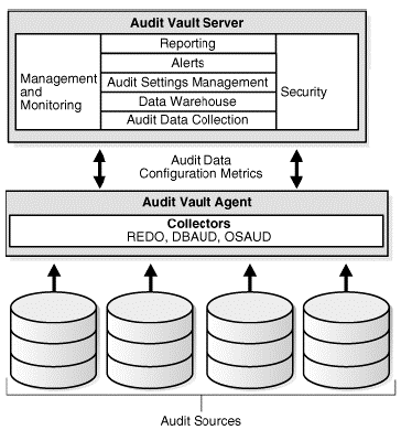 4.1 Audit Vault Architecture 4.