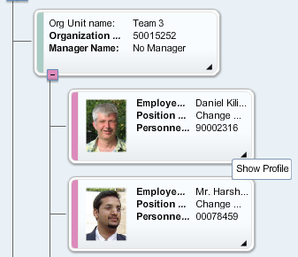 View Details per Object in a Short Profile A details panel called Short Profile is shown next to the Org Chart.