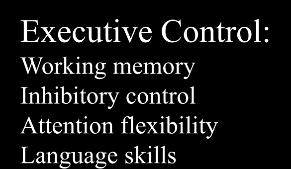 Poverty Delays Pre-frontal Cortex Development Key Competencies Getting Along With Others Executive Control: Working memory Inhibitory control Attention flexibility
