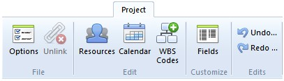 Project Options Unlink Resource s Calendar WBS Codes Fields Undo Redo Displays the Options dialog for changing File Locations, project Settings, properties and Viewer options.
