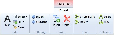 Format (Task Sheet) Text Select Fill Clear Indent Outdent Insert Delete Insert Blank Delete Insert Hide Change Text styles based on Critical Path, Flags or Progress in the Task Sheet.