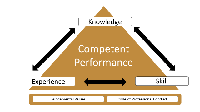A comprehensive analysis that identifies the knowledge, skills and experience required to competently perform the tasks of a profession is the cornerstone of a quality professional credentialing