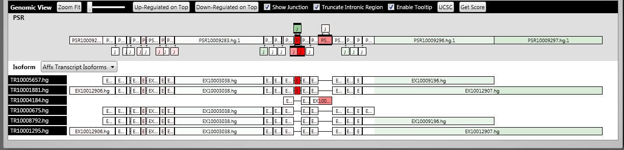 Alternative Splicing Analysis 42 Genomic View The Genomic View displays gene structure and transcript isoforms that belong to a TC. All PSRs and Junctions are represented as their true genomic sizes.