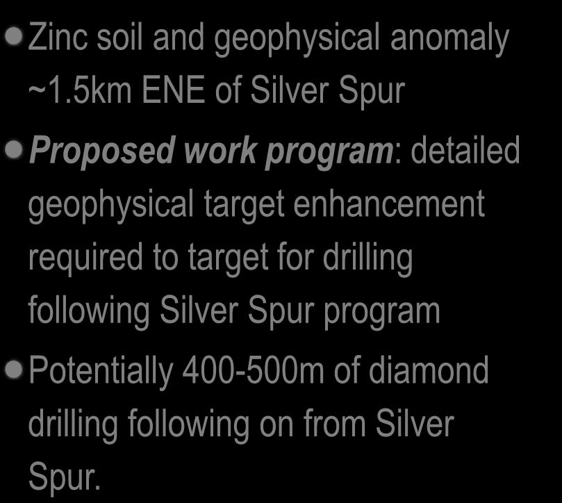 Tomcat Base Metals Target Zinc soil and geophysical anomaly ~1.