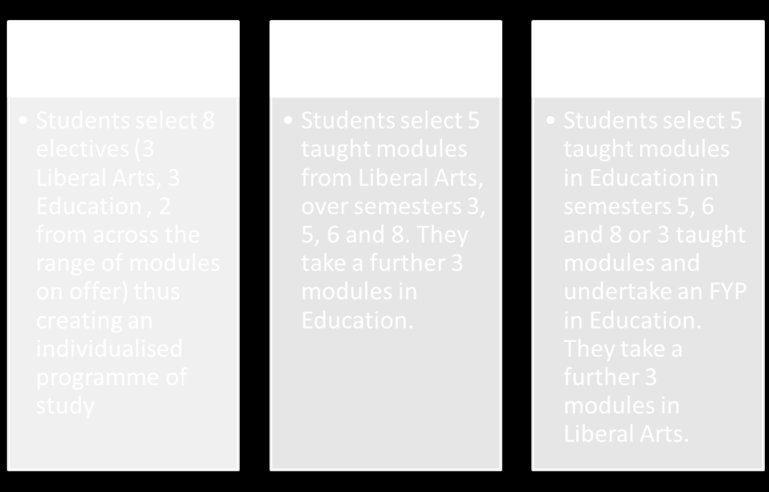 Option 1: Multidisciplinary Path A student selects eight modules from disparate areas/subjects, thus creating her/his own unique educational experience and creating a broad knowledge base for her/his