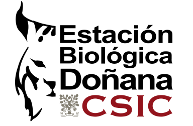 Thank you very much for your attention antonio.garcia.camacho@csic.