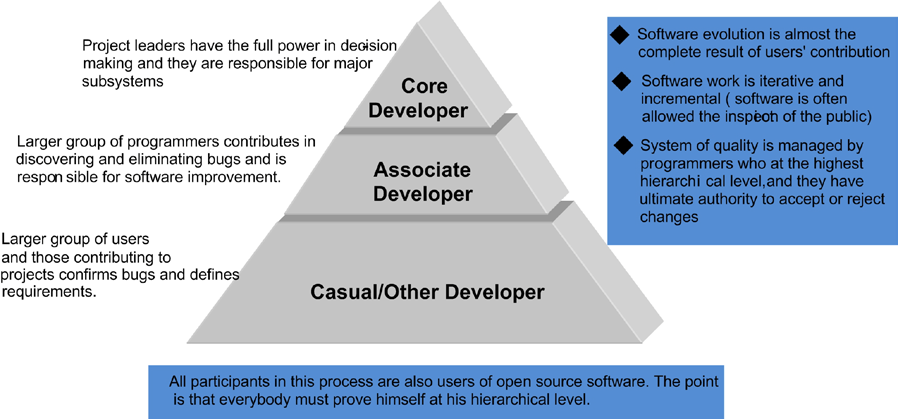Open Source Approach in Software Development - Advantages and Disadvantages Picture 1 The graphic survey of open source software methodology (Open source: IBM strategies for developing countries,