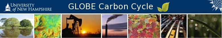 AN INTRODUCTION TO THE GLOBAL CARBON CYCLE Carbon: the building block of life. You may have heard this phrase, but have you fully considered what it really means?