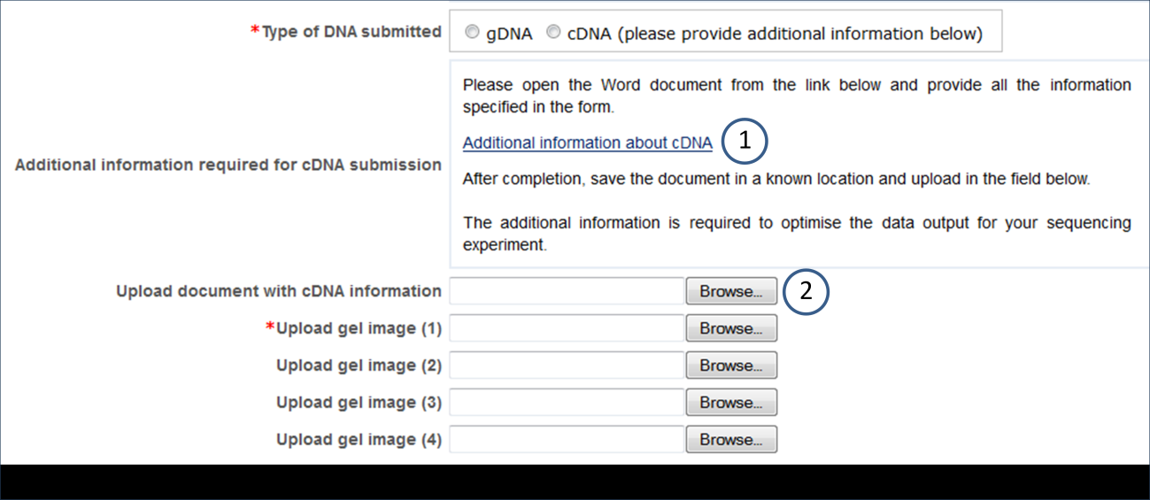 Please check the specific requirements before you prepare your samples for submission.