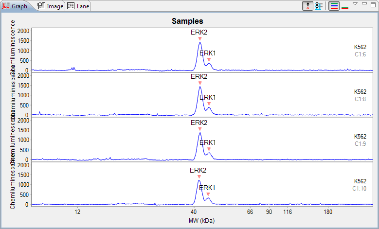page 198 Chapter 8: Size Assay Data Analysis Stacking Multiple Electropherograms Electropherogram data for multiple capillaries can be stacked vertically in the graph pane for comparison.