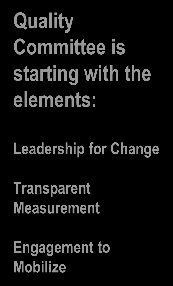 Quality Committee is starting with the elements: Leadership for Change