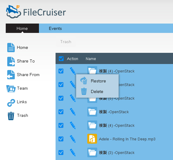 PROMISE Technology The Trash folder Files that are deleted when accessing FileCruiser through a browser via the User Portal go to the Trash directory.