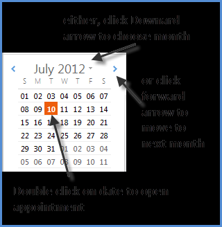 Figure 21: Appointment window Opening an Appointment 1.