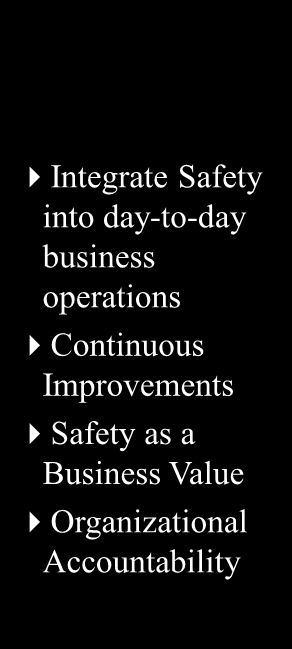 Safety and Risk Program maturity progresses when companies embrace safety as a business enabler instead of a cost center Sustainability Compliance (Reactive) Focuses on stopping the bleeding Wait for