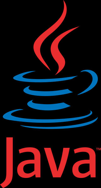 Business Logic Development Access and Process Application Data Code logic with Java