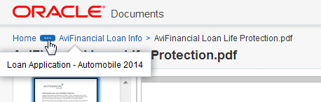 Notice that the document can be previewed directly from the web.
