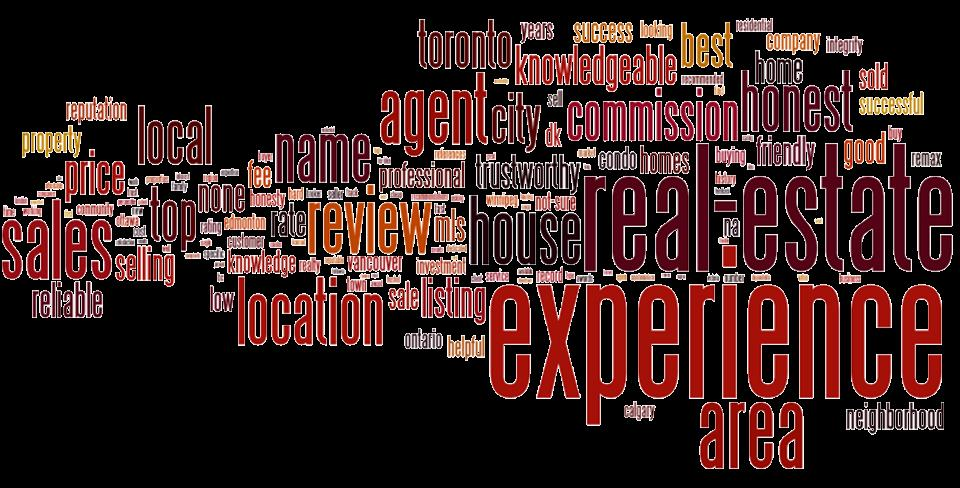 Years of experience 2. REALTOR reviews 3. Areas of expertise 4.