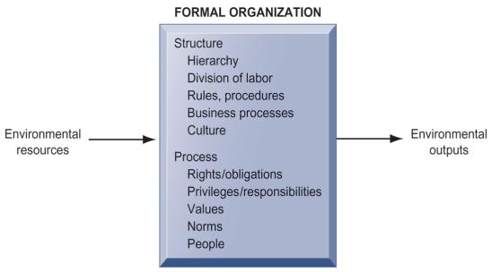 Technical definition: Formal social structure that processes resources from environment to produce outputs A formal legal entity with internal rules and procedures, as well as a social structure
