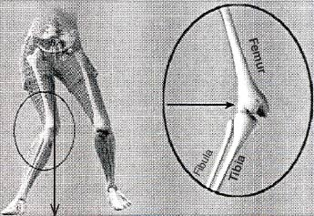 (Figure 4) at initial foot contact with the ground. The degree of these changes increased with age.