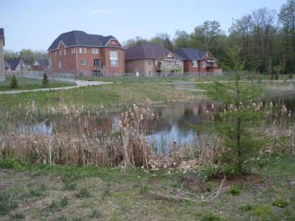 management facility in Ontario (MOE, 2003). Wet ponds provide for water quality and quantity, and erosion control. Unlike a wet pond, a dry pond does not have a permanent pool of water.