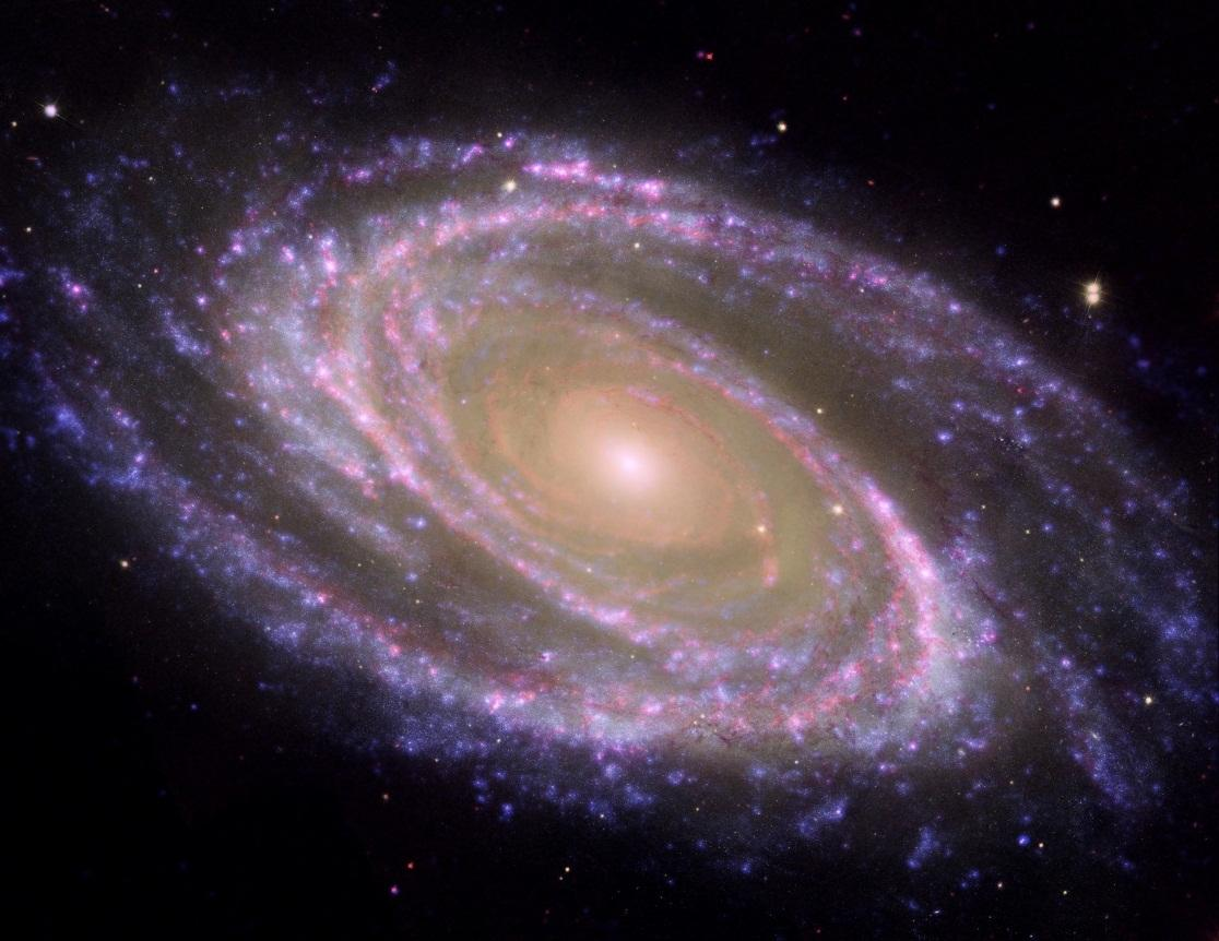galaxy because of its elegant arms curl all the way down into its center.