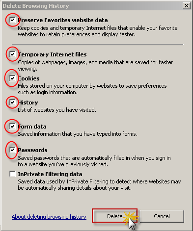 2. Internet Explorer 8 and 9 have the ability to delete several settings at once.