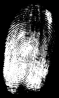 FINGERPRINT OF AN ATTACKER Timezone Browser version Fonts Browser add-ons 200+ attributes used to create the fingerprint.