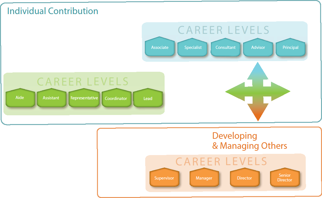 Career Ladders Enhance career planning Market competitive