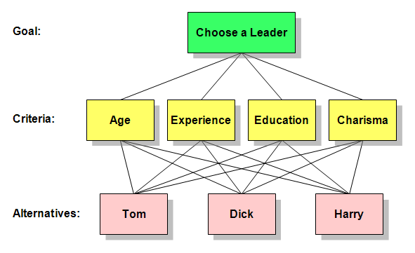 Analytic hierarchy process (e.g.