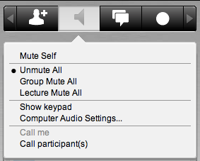 Mute/Unmute Participants Click the voice icon next to the participant s name on their business card to mute or unmute that participant.