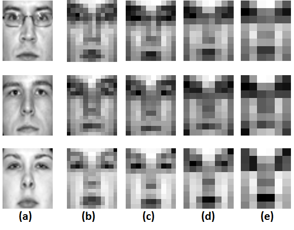 21 (d) and (e) show the corresponding images for the four different probe resolutions in decreasing order of resolution. Fig. 8. Examples images of different resolution.